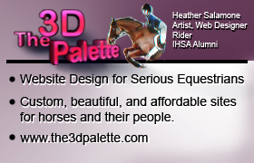 The 3D Palette Website Design